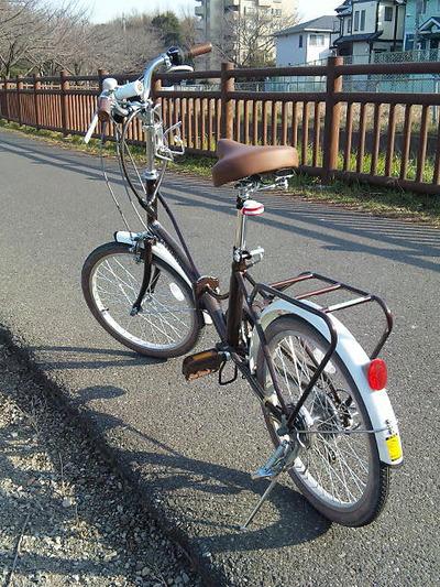 ダイエット用に購入した20インチの折りたたみ自転車