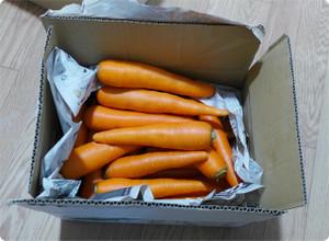 熊本から無農薬の美味しい人参が届きました 【 にんじんジュースダイエット 】