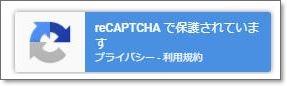 Recaptcha03
