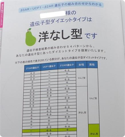 洋ナシ型詳細~DHC遺伝子検査 ダイエット対策キット