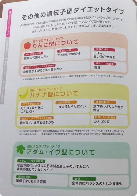 タイエットのタイプ~DHC遺伝子検査 ダイエット対策キット