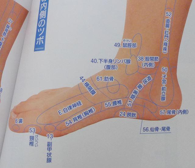 足の側面にある膀胱、尿道の反射区