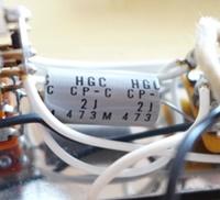 Hgccap021