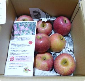にんじんジュースのお供に。りんご5kgを買ってみた