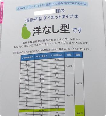 DHCの遺伝子検査 ダイエット対策キット結果は洋ナシ型